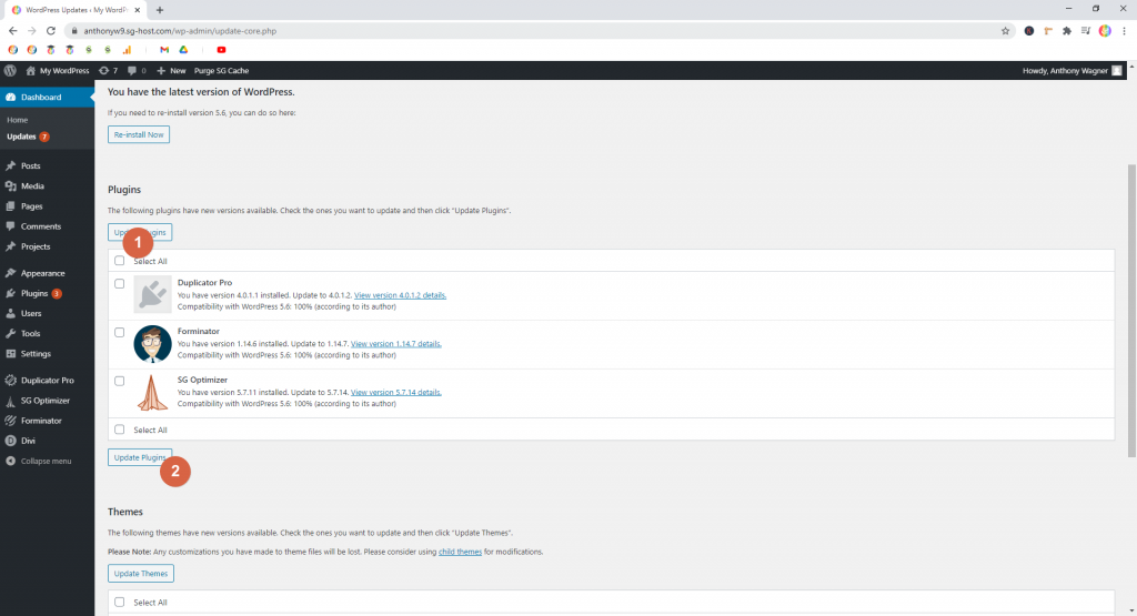 Screenshot showing how to update plugins • WordPress Troubleshooting Tips