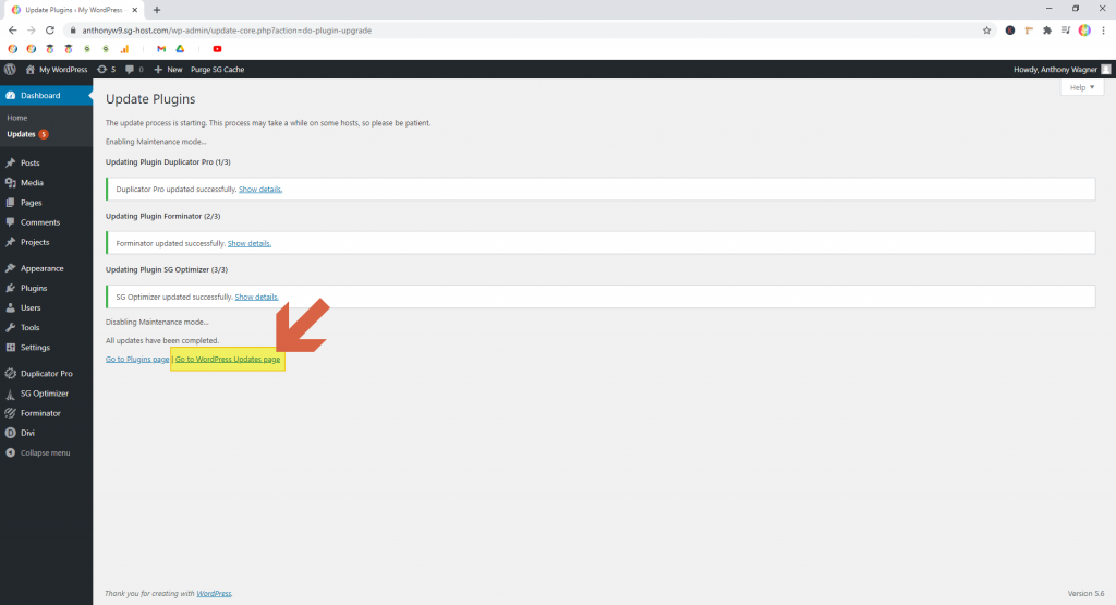 Screenshot showing how to get back to the update page • WordPress Troubleshooting Tips