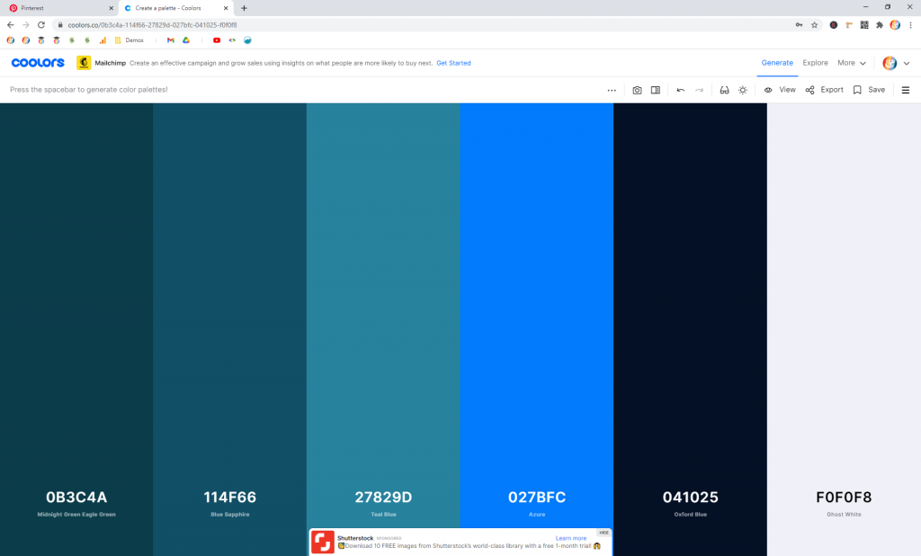 Screenshot showing the final color palette in coolors • Choose Website Colors