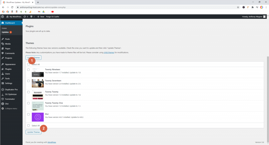 Screenshot showing how to update themes • WordPress Troubleshooting Tips