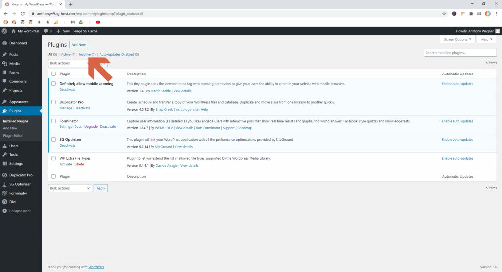 Screenshot showing how to filter by inactive plugins • WordPress Troubleshooting Tips