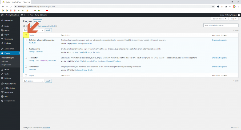 Screenshot showing how to select all plugins • WordPress Troubleshooting Tips