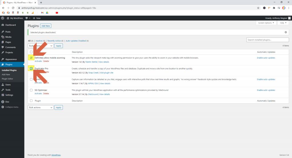 Screenshot showing how to select plugins • WordPress Troubleshooting Tips