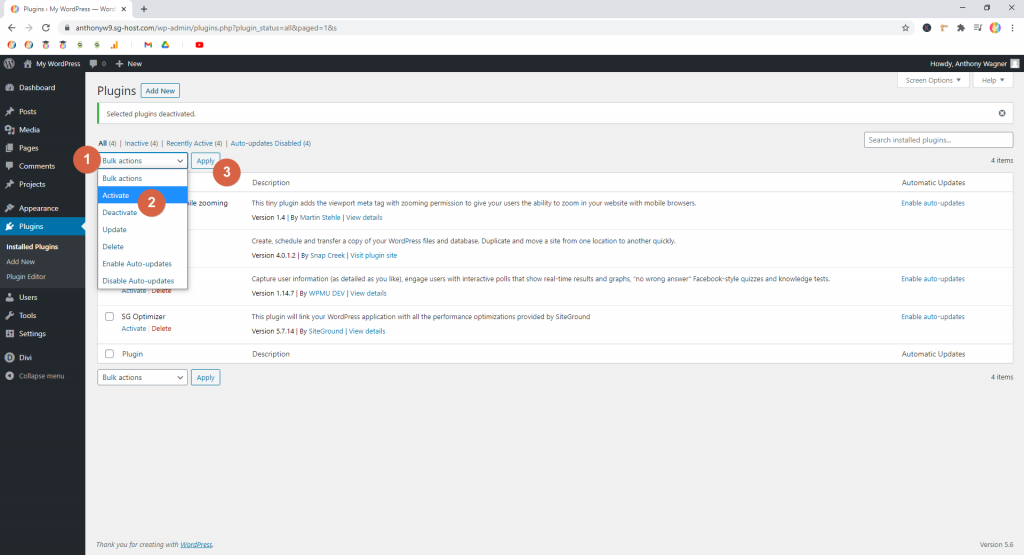 Screenshot showing how to batch activate plugins • WordPress Troubleshooting Tips